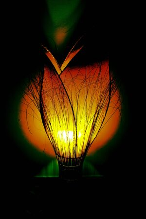 Creative lamp looking an orange tulip ligths up the room with hot colors in a black background