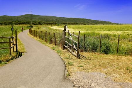 Getting out lockdown - People cycling on a bicycle path in Spring - Maremma Regional Park - Tuscany - Italy Фото со стока