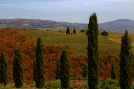 Small church between two cypresses isolated in the Tuscan countryside - Chapel of Madonna di Vitaleta - Valley of Orcia - Tuscany - Italy Banque d'images