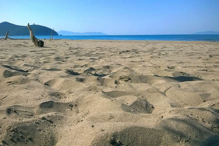 Solitary beach in summer holiday - Maremma Regional Park - Tuscany - Italy