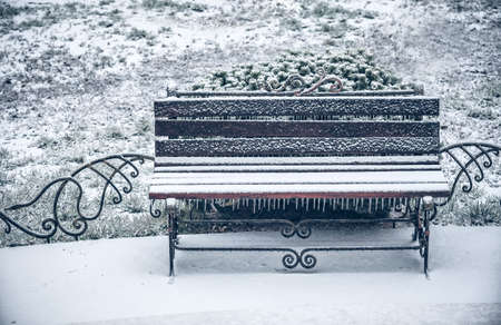 first snow of winter bench photo