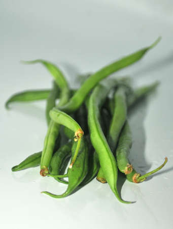 horticultural:  organic beans vegetable from eco horticultural