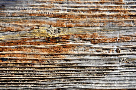 wood ancient material background photo