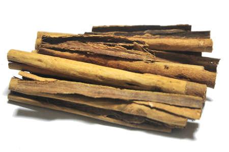 cinammon: cinammon sticks for condimentation spiece food gastronomy