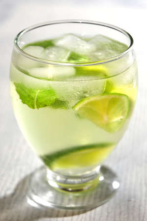 mojito clasical cuba fresh tropical alcoholic cold drink Stock Photo - 21412956