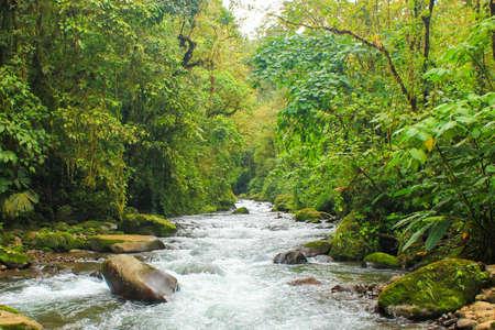 tropical mountain river