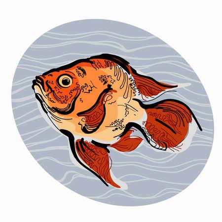 tropical acquarium: Colorful illustration of fish