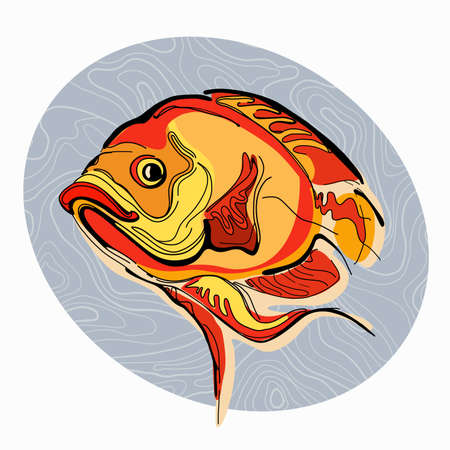 astronotus: Colorful illustration of fish