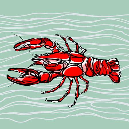 tropical acquarium: Colorful illustration of lobster