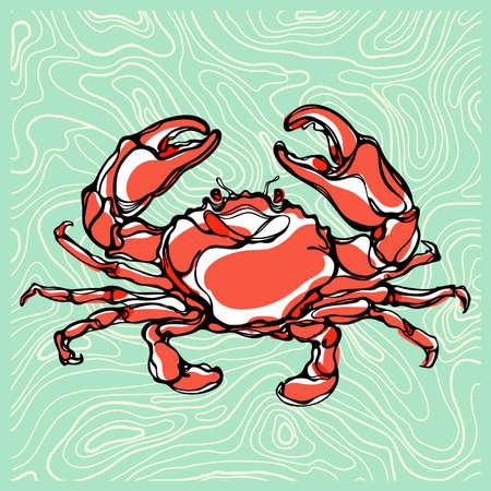 tropical acquarium: Colorful illustration of crab Illustration