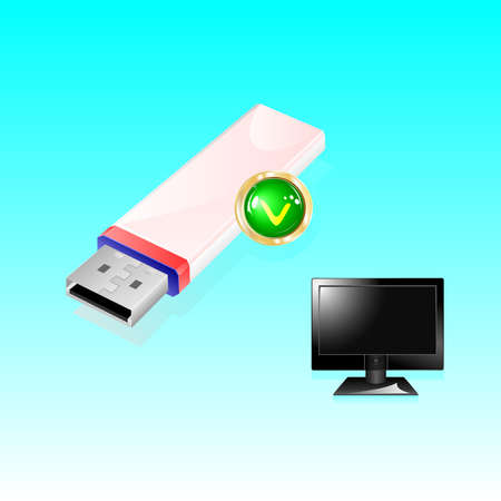 USB Flash drive and monitor for computer