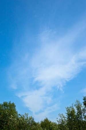 the head against the dark blue sky a cloud Stock Photo