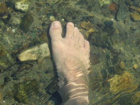 crystallization: Leg Into Water