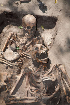 excavations: Archaeological excavations. Two skeletons found together. Moldova