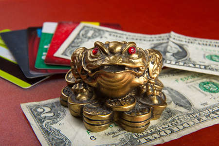Money frog sits on a background of money, wallet and credit cards. Money toad with red eyes.