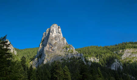 canmore: Lonely rock in a forest. Bicaz Romania. Stock Photo