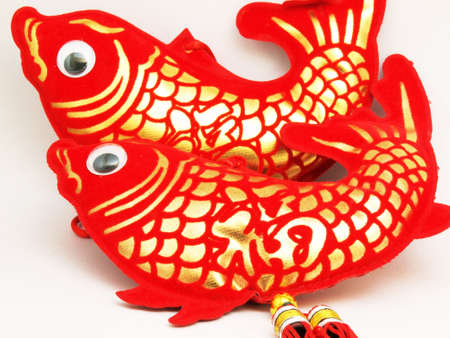 two red and golden chinese fish on the white background photo