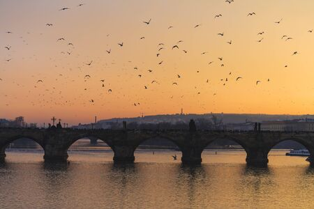 charles: Charles Bridge and seagulls in the evening in Prague Stock Photo