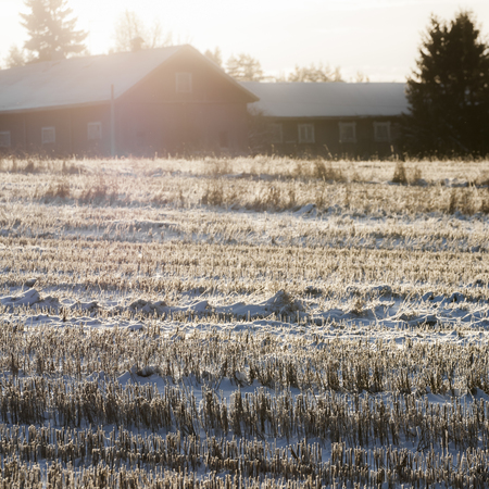 farmstead: Winter time in Finnish countryside Stock Photo