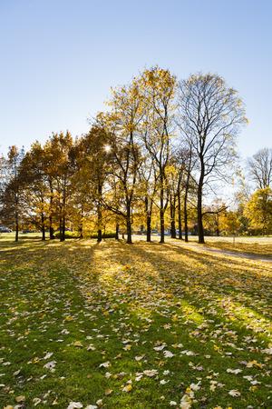 helsinki: Autumn in Helsinki Stock Photo