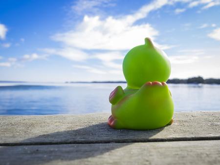 pato de hule: Rubber Duck anhelo de mar Foto de archivo