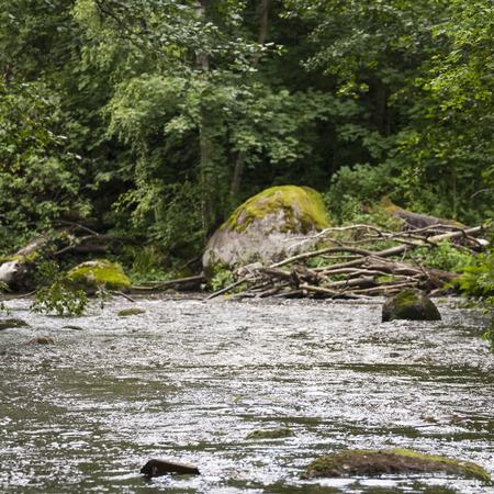 rapids: Nukarinkoski rapids in Finland