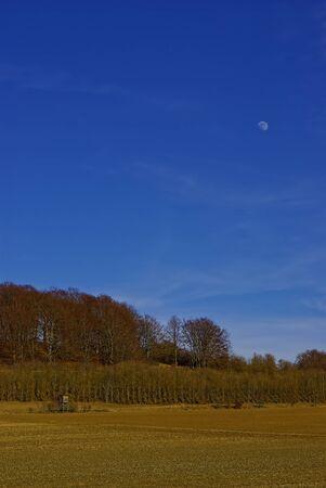 Solitude Moon Landscape