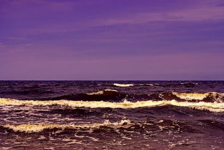 A sea of purple with waves and a view to the horizon. Stockfoto