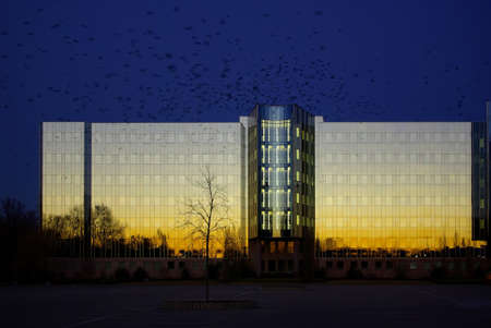 Die Zentrale des Drogerie-Imperiums SCHLECKER in Ehingen an der Donau, anl�sslich der Insolvenz und drohender Pleite im Januar 2012. Wie die Geier kreisen schwarze Rabenv�gel �ber dem gl�sernen Geb�ude in der Abendsonne. Stock Photo - 12159905