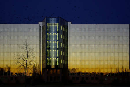 Die Zentrale des Drogerie-Imperiums SCHLECKER in Ehingen an der Donau, anl�sslich der Insolvenz und drohender Pleite im Januar 2012. Wie die Geier kreisen schwarze Rabenv�gel �ber dem gl�sernen Geb�ude in der Abendsonne. Stock Photo - 12159906