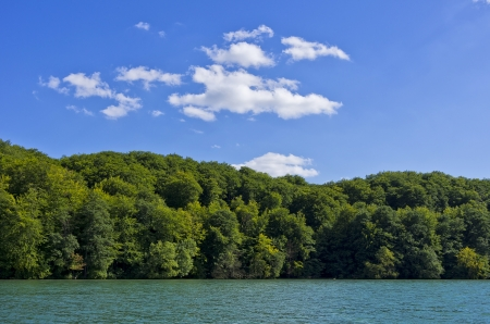 wooded: Beautiful wooded lakeside under blue and cloudy skies