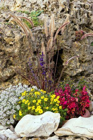 Small rock garden, rockery or alpine garden also called.