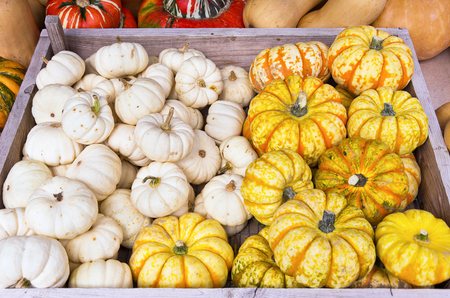 Squashes mix on display at a farmers market.