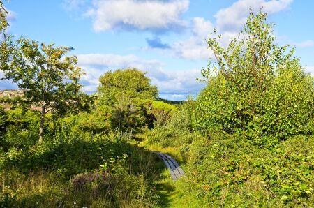Swedish nature reserve in Varberg, Halland ln. Natural Preserve near the town of Varberg, Halland County, Sweden.