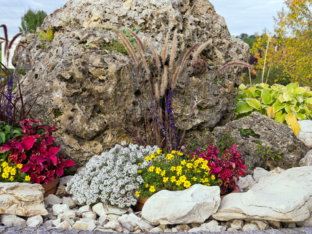 rockery: Small rock garden, rockery