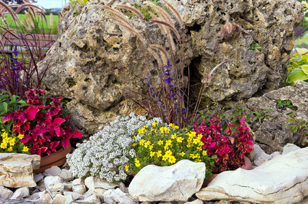 rockery: Small rock garden, rockery or alpine garden