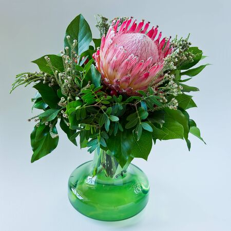 Still life of a wonderful bouquet of a single Protea blossom and greenery in a green vase. Stock Photo