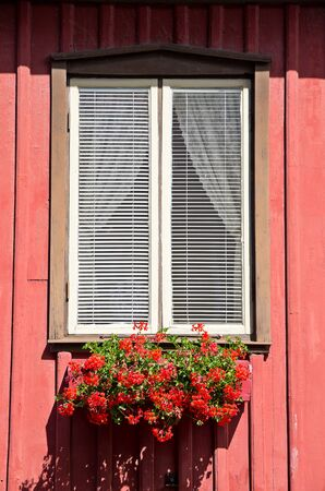 Red flowers in the window box of a typical Swedish home.