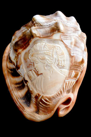 cockle-shell with incised antique face photo