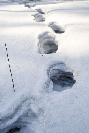 multilayer: human footprint in the deep multi-layer snow Stock Photo
