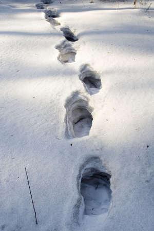 multilayer: humanos huella profunda en el multi-capa de nieve