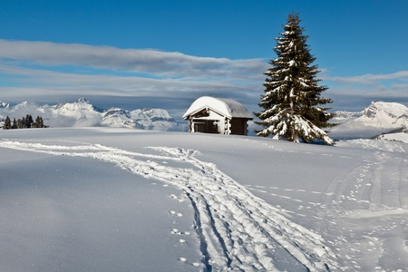 Small Hut and Fir Tree on the Top of the Mountain in French Alps Stock Photo