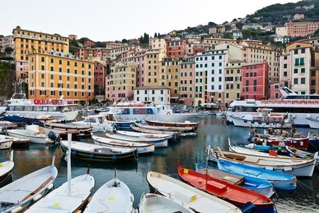 Many Boats in Marina of Camogly in Italy photo