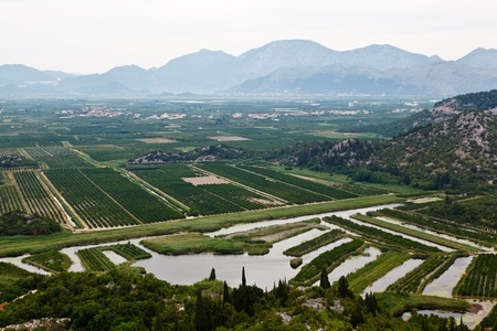 agronomic: Agriculture in the Delta of River near Dubrovnik, Croatia Stock Photo
