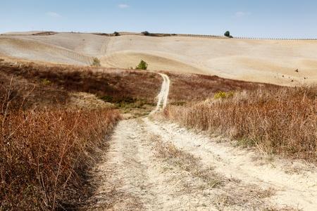 montalcino: Scenic Road in Tuscan Countryside near Montalcino, Tuscany, Italy