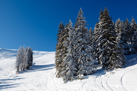 Ski Slope and Beautiful  Landscape in Megeve, French Alps, France photo