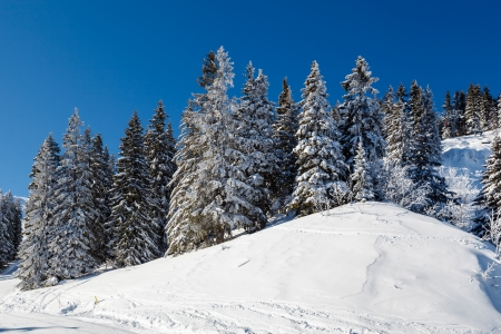 Sunny Ski Slope near Megeve in French Alps, France photo