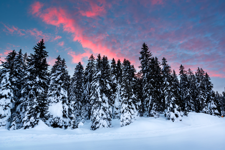 Beautiful Sunrise near Madonna di Campiglio Ski Resort, Italian Alps, Italy