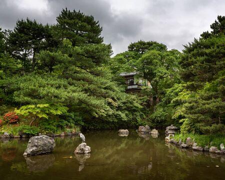 kink: Heron sitting on the rock in the Pondin Maruyama Park Kyoto Japan Stock Photo