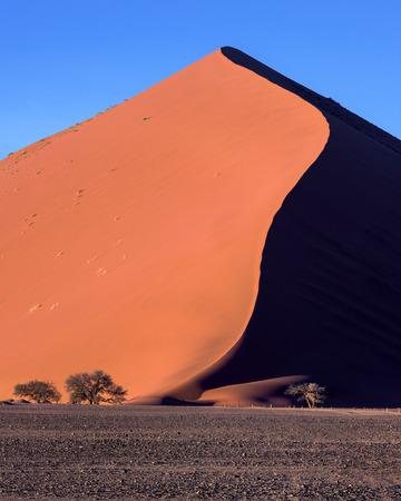 朝は、ナミブナウクルフト公園、ナミビア ソーサス フライのビッグダディ砂丘 写真素材